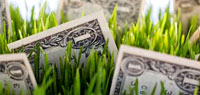 Инвестирование в ПАММ-счета (3-я неделя, +17.86$)
